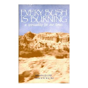 Every Bush Is Burning: A Spirituality for Our Times O.S.F. Joan Puls and Dr. Susan Muto