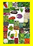 Emergency Food Survival Seed Non-gmo Non-hybrid Survival Seeds Non-Hybrid 37 Varieties of Survival Vegetable Seeds Heirloom Seeds Non GMO