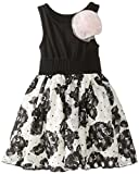 Pippa & Julie Girls 2-6X Party Girl Lace and Knit Dress, Black/Pink, 2