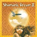 Shamanic Dream Vol. 2
