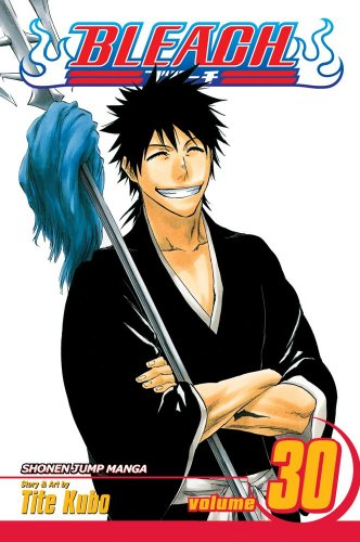 Bleach, Vol. 30