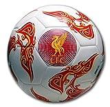 Warrior Liverpool