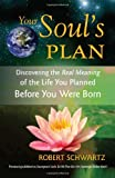 Your Souls Plan: Discovering the Real Meaning of the Life You Planned Before You Were Born