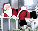 Funny Santa Christmas Yard Decoration By Collections Etc