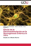 img - for Efecto de la Electroestimulaci n en la Neurog nesis Ent rica In Vitro: Estudio en el Modelo Murino (Spanish Edition) book / textbook / text book