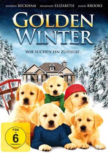 Golden Winter - Wir suchen ein Zuhause ...