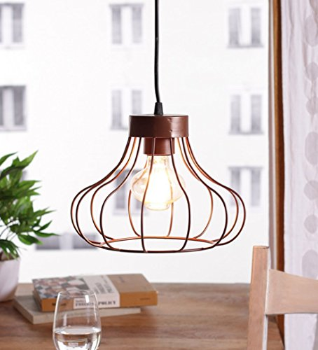 The Brighter Side Ibarra black cage pendant light