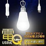 My Vision USB給電式LED電球 電Q 2個セット 3m 中間スイッチ 明かり ライト アウトドア キャンプ 夜釣り 車中泊 簡単 夜 夜間 電灯 MV-USBDENQ