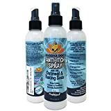 NEW Anti Itch Oatmeal Spray for Dogs and Cats | 100% All Natural Hypoallergenic Soothing Relief for Dry, Itchy, Bitten or Allergic Damaged Skin | Vet and Pet Approved Treatment - 1 Bottle 8oz (240ml)