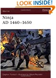 Ninja AD 1460-1650 (Warrior)