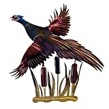 Next Innovations Pheasant Refraxions 3D Wall Art