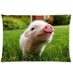 Personalized Little Lovely Cute Baby Pig Cover for Roomy Zippered Pillowcase 30x20-Inches (One Side)