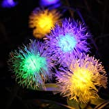 Lycheers 4.8m 20 Led Chuzzle Solar Fairy String Lights for Outdoor - Gardens - Homes - Christmas Party (Multi-color)