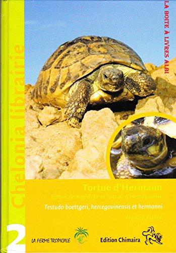 tortue-dhermann-tortue-de-boettger-et-tortue-dherzegovine