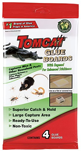 Tomcat Glue Boards (Captures Mice and Other Household Pests, Eugenol Formula, 4-Pack) (Glue Boards compare prices)