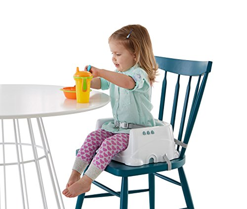 Fisher-Price Healthy Care Deluxe Booster Seat Home Garden