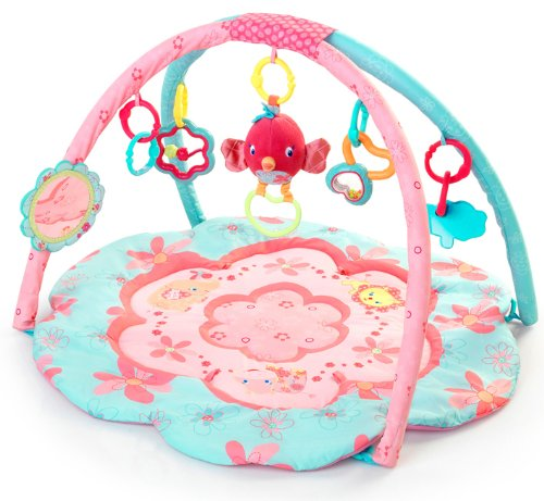 Find Bargain Bright Starts Petals and Friends Activity Gym