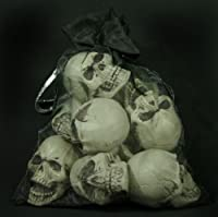 Bag of 9 Miniature Skulls by SkeletonStore