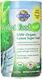 Garden of Life Perfect Food Raw Organic Green Super Food, 240 Gram