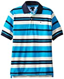 Tommy Hilfiger Big Boys Short Sleeve Leroy Stripe Polo, Hawaiian OC, Large