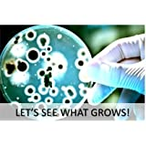 Bacteria Science Fair Project Kit (10-Pack). Great for Students Interested in Learning About Microbiology. Everything You Need to Conduct a Bacteria Growth Experiment. Project Guide eBook Included.