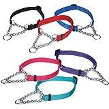 Guardian Gear Martingale Dog Collar, 3/4-Inch, Medium, Red