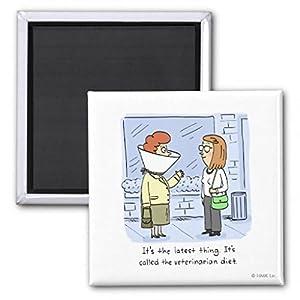 Amazon.com: Shoebox Veterinarian Diet Fridge Magnet ...