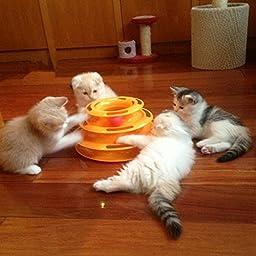 FOCUSPET Cat Kitty Interactive Pet Toy Amusement Plate Trilaminar Crazy Ball Disk