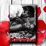 Megan's Story: The Cabin, Book 4   Natalie Stark