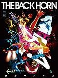 創造のパルス(初回限定盤) [DVD]