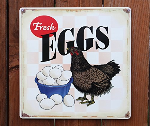 Fresh Eggs Hen Chicken Distressed Tin Sign 14 x 14in (Vintage Chicken Signs compare prices)