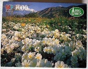 1996 Big Ben 1000 Piece Puzzle - Anza Borrego Desert State Park,Ca