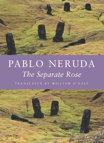 The Separate Rose/La Rosa Separada