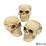 Halloween Skeleton Skulls
