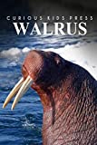 Walrus - Curious Kids Press