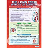 The Long Term Effects of Exercise PE Educational Wall ChartPoster in laminated paper A1 850mm x 594mm