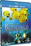 Fascinant r�cif de corail 3D - Volume...
