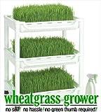 Tribest SM-350 Sproutman Wheatgrass Grower