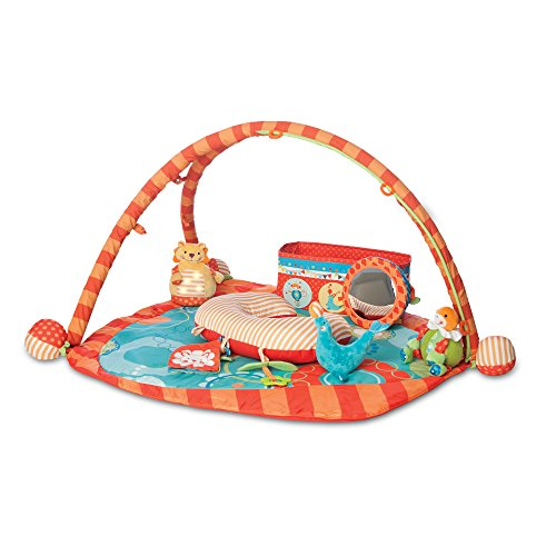 Boppy Flying Circus Play Gym with Toy Box, Orange