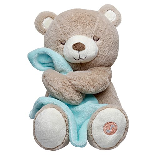 Carter's Musical Soother Bear, Brown