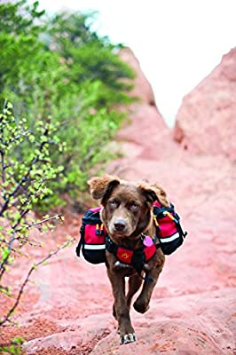 Mountainsmith Dog Backpack
