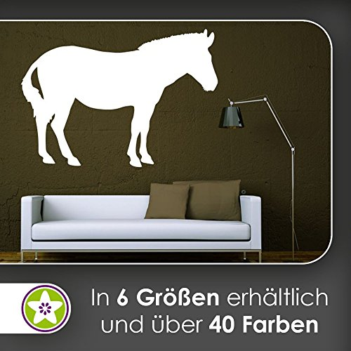 Kiwi Star Mule Donkey Mule pack Animals Wall Stickers Wall Stickers Wall Sticker available in 6 Sizes, 54_tuerkis, 96 x 67 cm