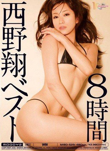 西野翔ベスト8時間 [DVD]