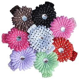 16 Pc Set - Polka Dot Gerbera Daisy Flower & Stretch Crochet Headband (#24)