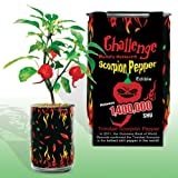 Natures Greeting Trinidad Scorpion Pepper Magic Can