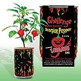 Nature's Greeting Trinidad Scorpion Pepper Magic Can