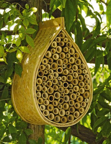 Mason Bee House (Honey Bee House compare prices)