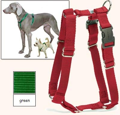 Sure-Fit Dog Harness, 5-Way Adjustability For A Perfect Fit! (Green, X-Petit) front-43041