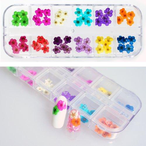 ネイルサイズの小さい花だけ 本物の押し花60枚セットケース入リアルドライフラワー ジェルネイルに埋め込み