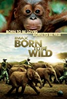 IMAX Born to Be Wild